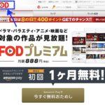 コンフィデンスマンJP 運勢編 フル動画を無料視聴する方法とあらすじ!
